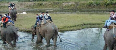 golden triangle tour with corbett national park